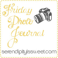 Friday Photo Journal