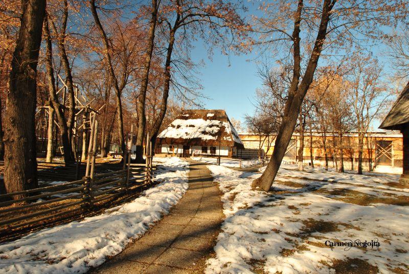 Bucuresti_Muzeul Satului_33