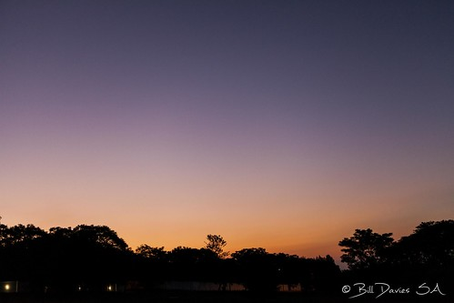 Bryanston Sunset