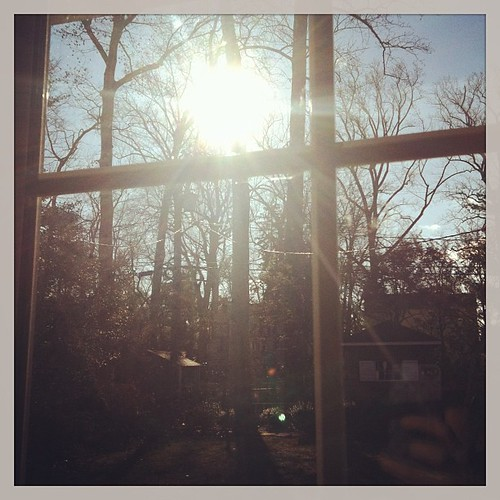 Praise God for the sun shining after many dreary days! #1000gifts