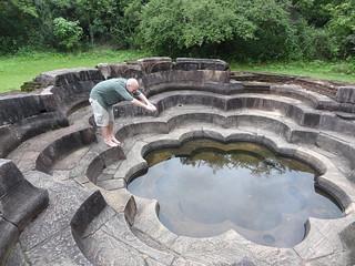 Obraz Lotus Pond.