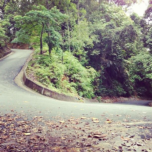 Pg Hill
