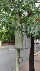 Derelict traffic signal control box?