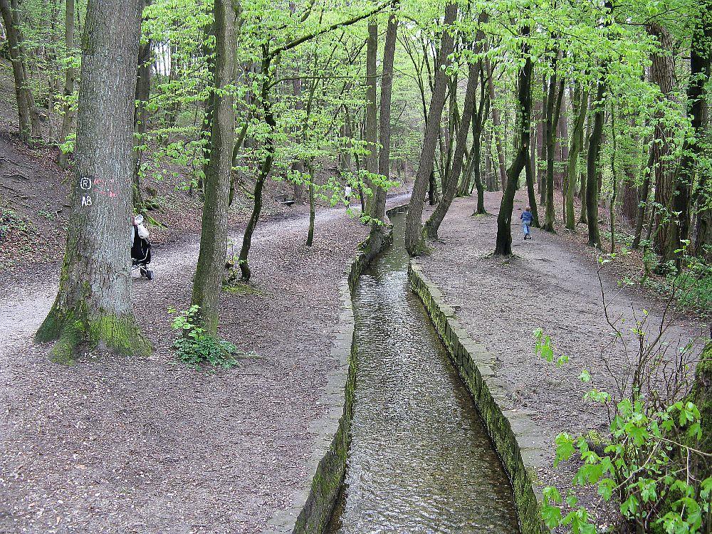 Donoper Teich 2012