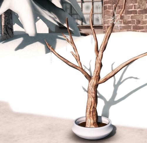 Circa Tree