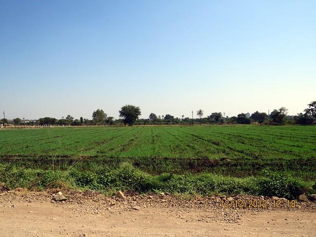 Green Zone opposite - 33 KeshavKunj, 2 BHK 2.5 BHK & 3 BHK Fllats at Keshav-Nagar, Mundhwa, Pune 36