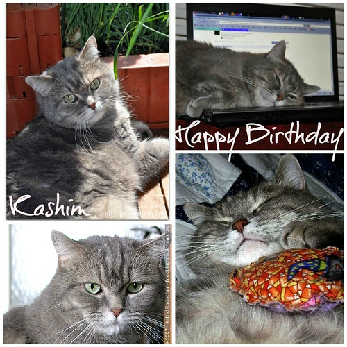 Happy Birthday Kashim 2012