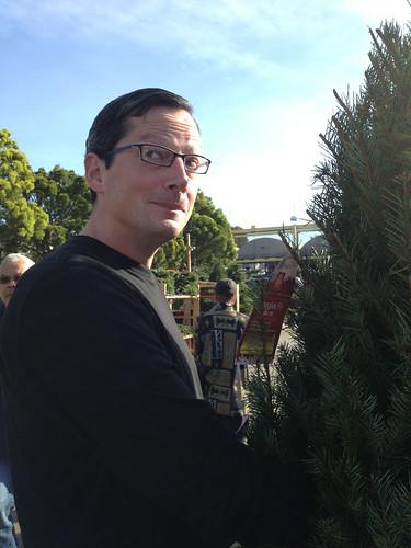 Gettin' a tree
