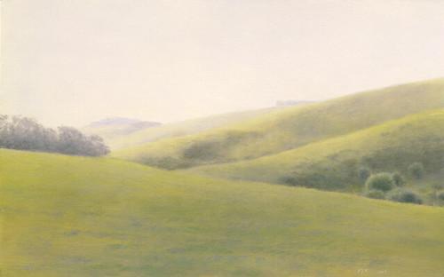 Pamela Kendall Schiffer, Green Hills, Hollister, 2009