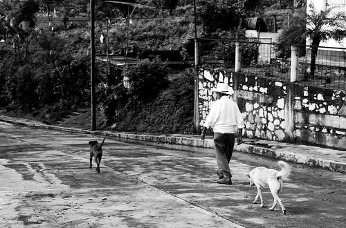street old people blackandwhite bw dog public mexico persona 50mm town photo calle aperture sad view sony pueblo free oldman perro shutter veracruz popular share streetphotographer adulto naranjal sonyalpha alducin sonyalpha390 jesusalducin