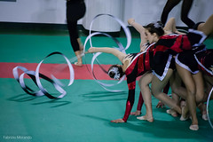 sports(1.0), performing arts(1.0), gymnastics(1.0), entertainment(1.0), rhythmic gymnastics(1.0),
