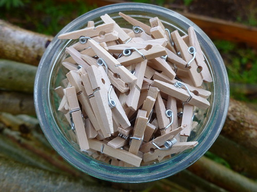 A pot of little pegs