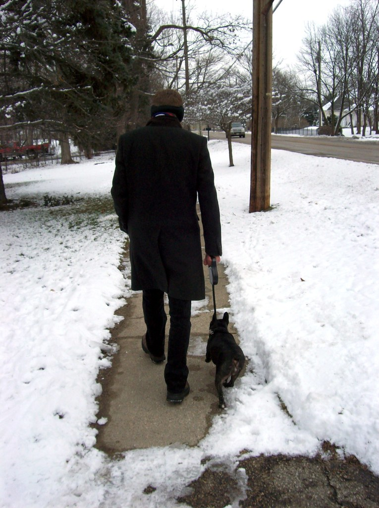 Taking Marley for a snowy walk
