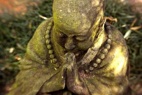 buddha (sparked)