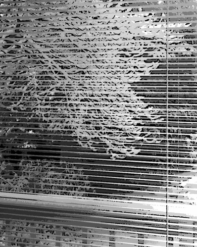 Snow Scene Through Window Blinds (Digital Woodcut in Black and White) by randubnick