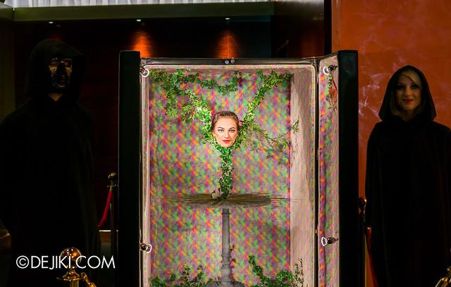 Incanto trickery at the Festive Theatre Foyer