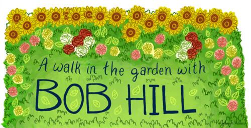 SIL Bob Hill 2013
