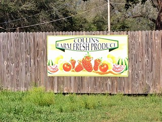 Collins Farm Fresh Produce