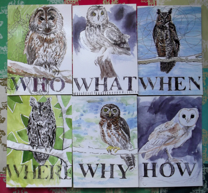 owls_who_what_when