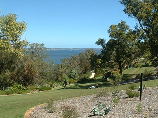 Brief glimpse of Swan River at Kings Park