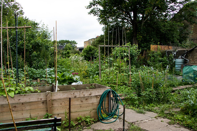 Walworth Allotment Association-19