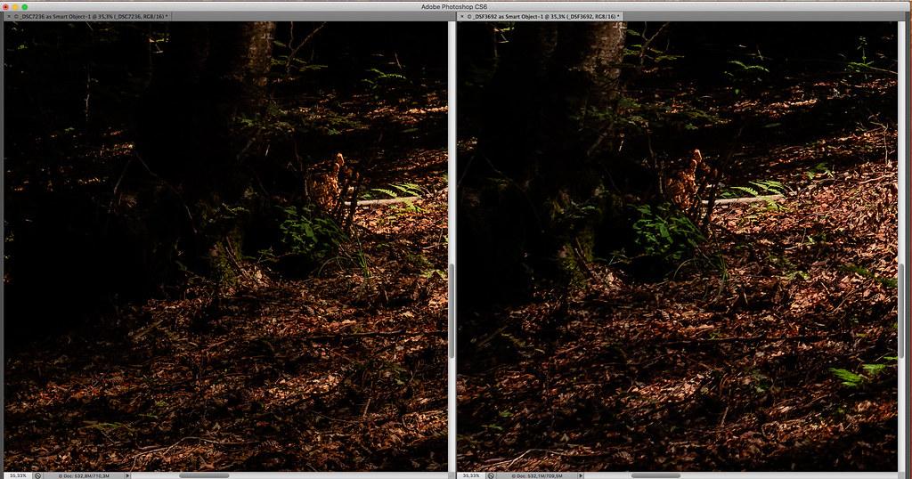 Sony_A7r-vs-Fujifilm_X-T10_05