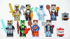 LEGO Minecraft Skin Pack 1 & 2