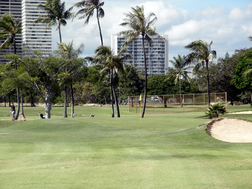 Ala Wai Golf Course 075b