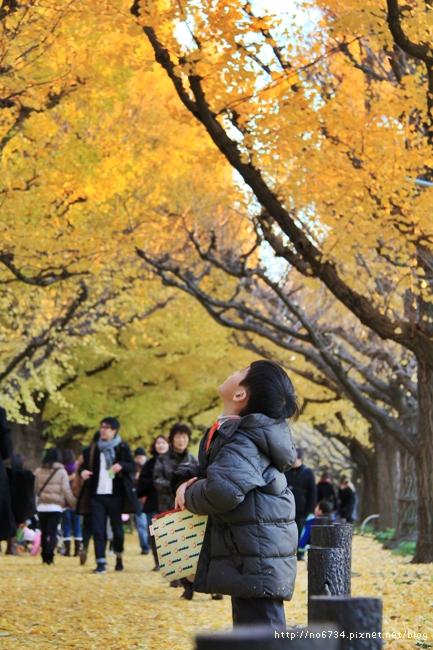 20121206_XmasTokyo_1432 f