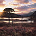 Loch Tulla for Dad