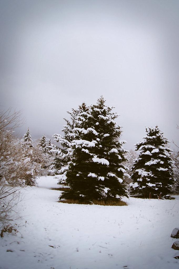 winteradventure3