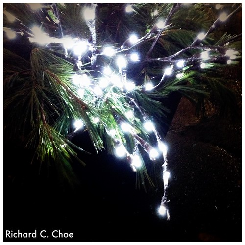 Christmas Lights 12 by rchoephoto