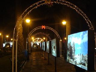 navidad 2012 06