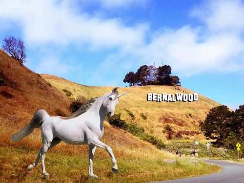 Unicorn Sighting: Bernal Hill
