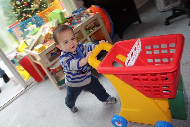 Pushing the Shopping Cart