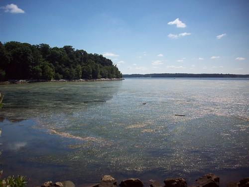 maryland chesapeakebay elkneckstatepark