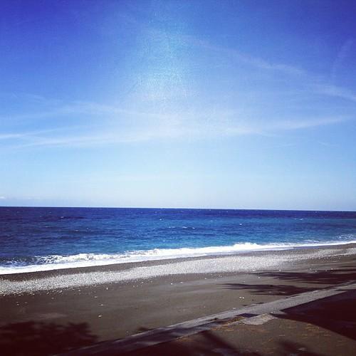 今日の日本海はとっても穏やかで暖かい。