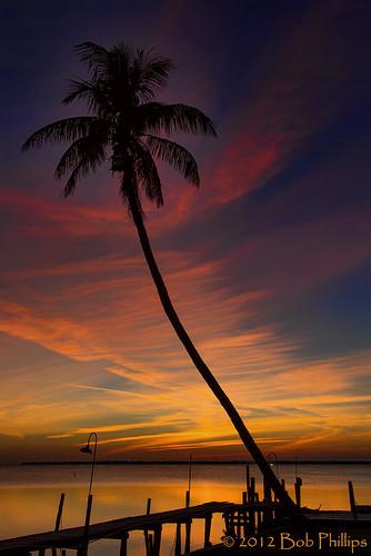 sunset clouds dock florida palmtrees pineland