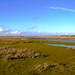 polder kobbeduinen 2 hdr