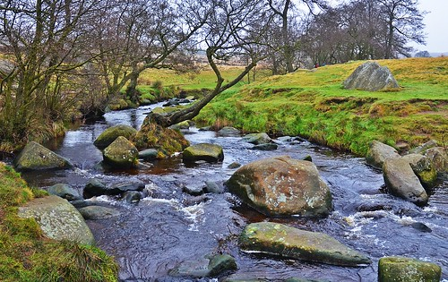 Longshaw Estate 16 by birbee