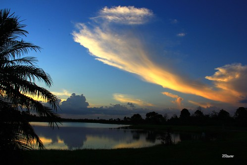 sky lake nature clouds reflections landscape sunsetmiami canoneos60d parksmiami landscapemiami zstincer silhouettestree