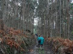 Ruta Morás - Esteiro (Xove)