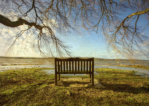 blue winter shadow sky sun lake tree water canon bench waves view flood leicestershire bare seat branches wide reservoir textures willow swollen 365 day27 f28 thaw textured photooftheday 6d flypaper lseries 1635mm beautyinnature bodyofwater project365 eyebrooke day27365 3652013 365the2013edition 27jan13