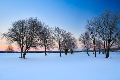 trees winter sunset snow suomi finland landscape cities talvi lappeenranta southkarelia