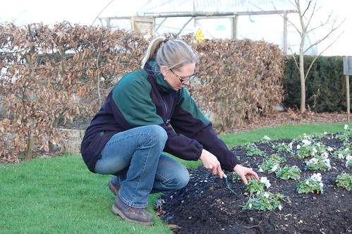Gardening training courses