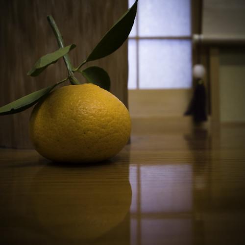 First Mikan [ 温州蜜柑] (Satsuma, Mandarin 无核桔) Orange