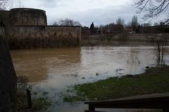 Confluent de la Seille et la Moselle - Promenade des Remparts