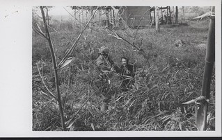 Marine Brings Vietnamese Woman Out of Her Hiding Spot, 5 February 1968