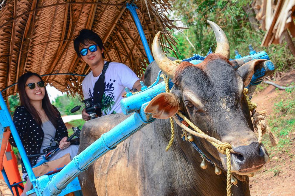 Anura Village Tour