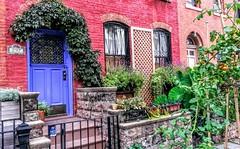 New York, Brooklyn, USA